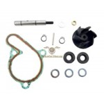 AA00825 - Kit revisione pompa acqua Derbi d50b0 (motore Piaggio)