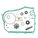 AA00837 - Kit Revisione Pompa H2O Kymco Xciting 400cc