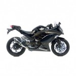 3293 - EXHAUST SLIP-ON LEOVINCE GP CORSA CARBON FIBER